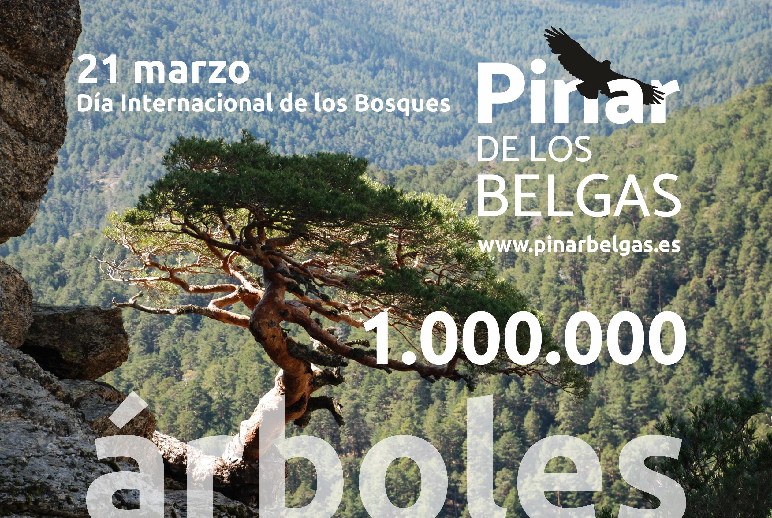 1 millón de árboles en el corazón de la Sierra de Guadarrama.